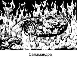 = Саламандра