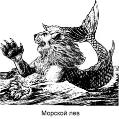 = Морской лев